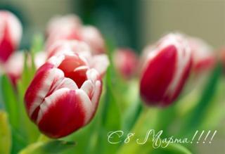 otkritka-pozdravlyayu-s-8-marta