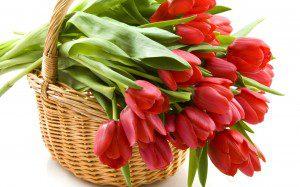корзинка тюльпанов для настроения